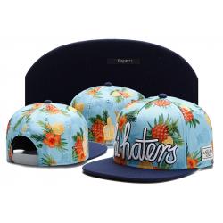 Голубая бейсболка с прямым козырьком Cayler & Sons Snapback Hi Haters Pineapple