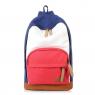 Трехцветные рюкзаки City Walk